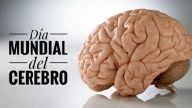Photo of 22 de julio, día Mundial del Cerebro.