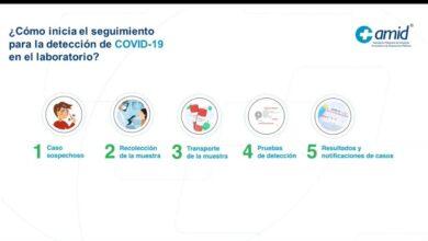 Photo of ¿Cuáles son las pruebas para la detección de Covid-19?