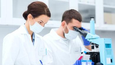 Photo of México podría estar entre los primeros 10 lugares a nivel mundial en inversión en investigación clínica.