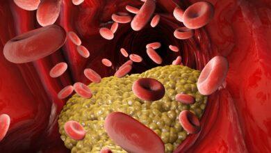 Photo of Silanes crea fármaco que reduce 65% el colesterol malo.