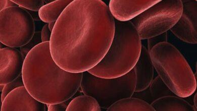 Photo of Estudios genéticos identifican información que puede predecir  enfermedades hematológicas