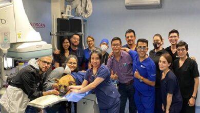 Photo of Por primera vez en México y AL instalan válvula pulmonar en un perro